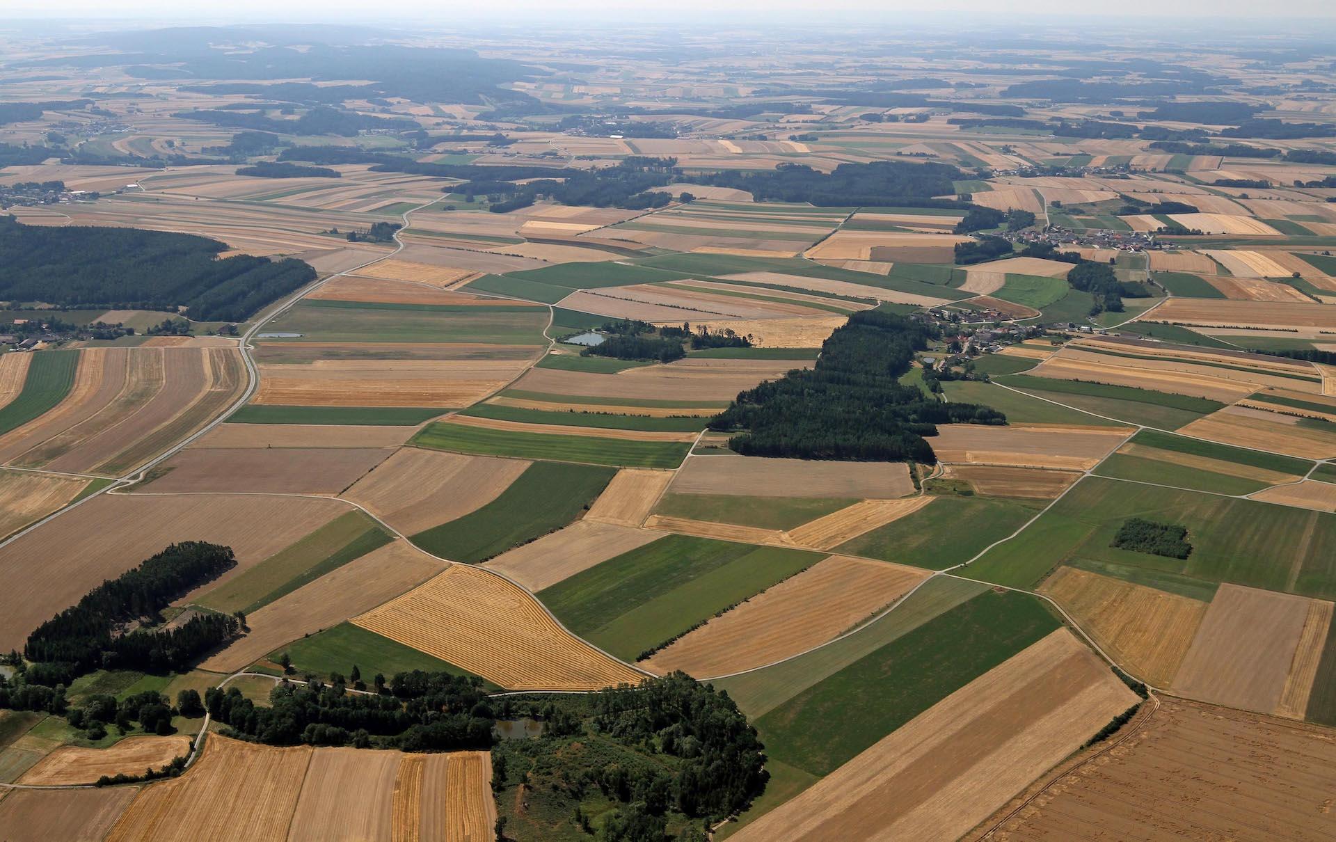 Boj o půdu - Nedej se (ČT)