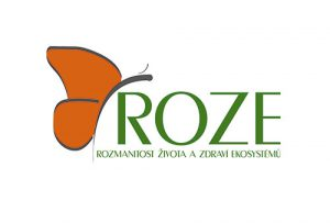 logo_roze